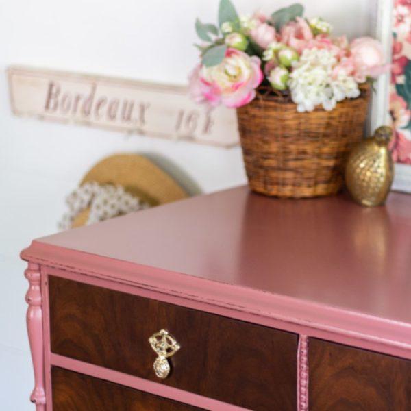 Enchanted Echinacea Pintura para muebles